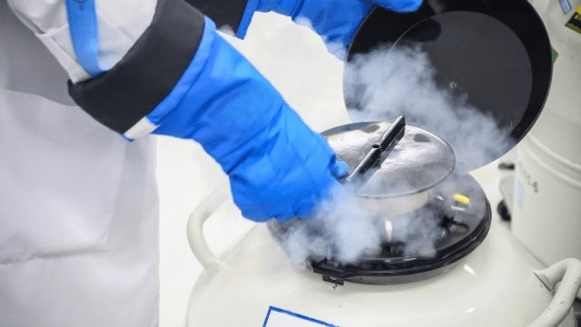 What to know about Egg Freezing?